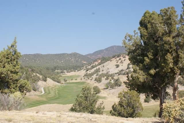 400 Deer Valley Drive, New Castle, CO 81647 (MLS #166977) :: Roaring Fork Valley Homes