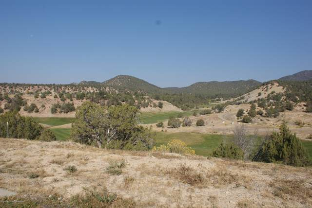 531 Deer Valley Drive, New Castle, CO 81647 (MLS #166979) :: Roaring Fork Valley Homes