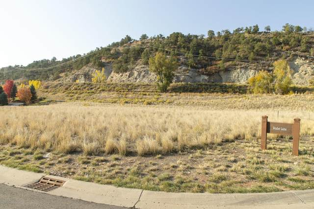 61 Wader, Carbondale, CO 81623 (MLS #167044) :: Western Slope Real Estate