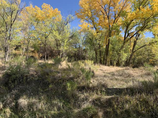 TBD East Avenue, Rifle, CO 81650 (MLS #167073) :: McKinley Real Estate Sales, Inc.