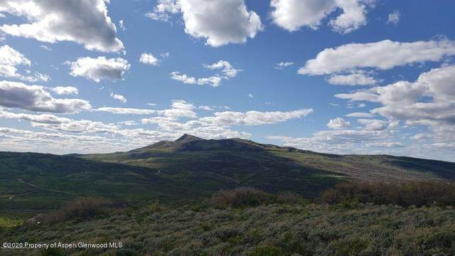 976 Eagle Loop Lot 583, Craig, CO 81625 (MLS #167084) :: Western Slope Real Estate