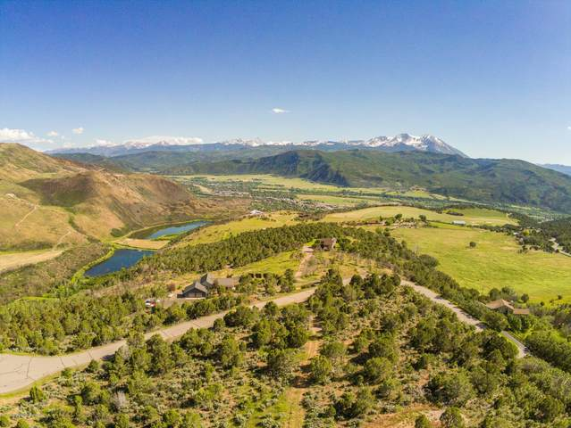 007 Blue Creek Overlook, Carbondale, CO 81623 (MLS #167097) :: McKinley Real Estate Sales, Inc.