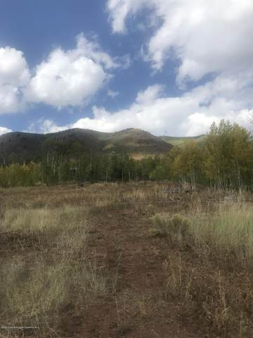 TBD Regatta Drive, Basalt, CO 81621 (MLS #167135) :: Western Slope Real Estate