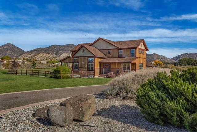 295 N Meadow Drive, Rifle, CO 81650 (MLS #167184) :: McKinley Real Estate Sales, Inc.