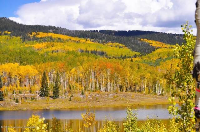 TBD Beaver Drive, Craig, CO 81625 (MLS #167210) :: Roaring Fork Valley Homes