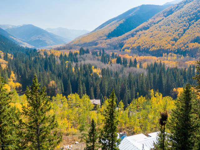 27 and 33 Fall Creek Road, Aspen, CO 81611 (MLS #167242) :: Roaring Fork Valley Homes