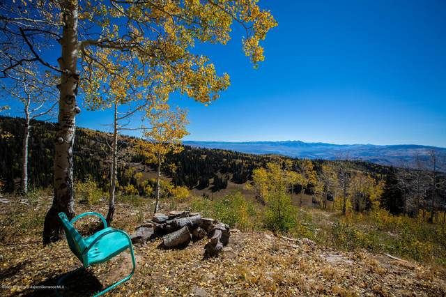 TBD Possum Creek, Glenwood Springs, CO 81601 (MLS #167319) :: Western Slope Real Estate