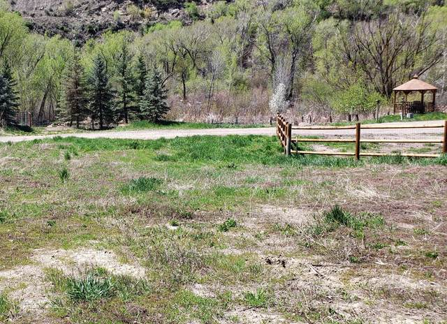 Tbd Shewana Lane Lot # 1, New Castle, CO 81647 (MLS #167548) :: Roaring Fork Valley Homes