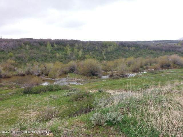 1501 Fiddleneck Drive Lot 14, Craig, CO 81625 (MLS #167598) :: Roaring Fork Valley Homes