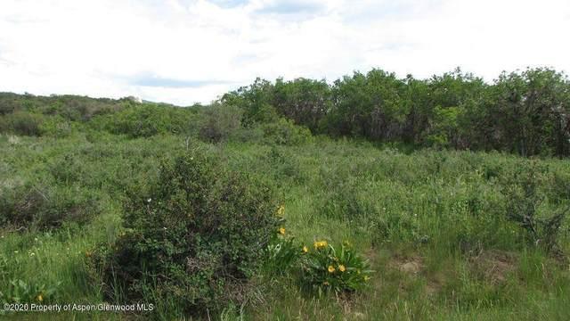 1600 Fiddleneck Drive Lot 47, Craig, CO 81625 (MLS #167599) :: Roaring Fork Valley Homes