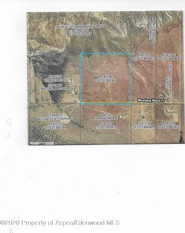 TBD Mustang Trail, Rifle, CO 81650 (MLS #167926) :: Western Slope Real Estate
