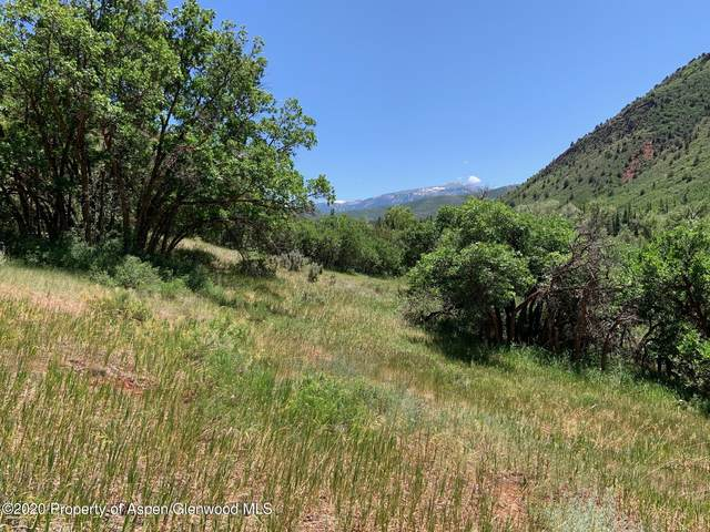 354 Snowmass Creek Rd, Snowmass, CO 81654 (MLS #167993) :: Western Slope Real Estate