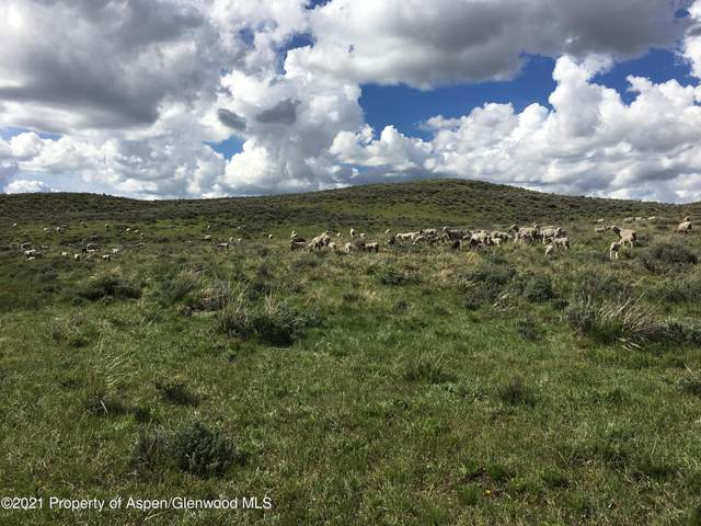 TBD County Road 18, Craig, CO 81625 (MLS #168480) :: Western Slope Real Estate