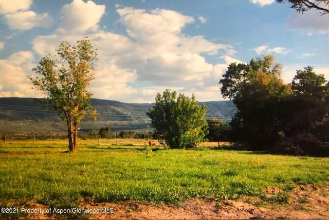 944 48 1/2 Rd Road, Mesa, CO 81643 (MLS #168589) :: Roaring Fork Valley Homes