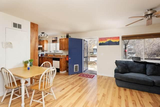 19 Maroon Drive, Carbondale, CO 81623 (MLS #168845) :: McKinley Real Estate Sales, Inc.