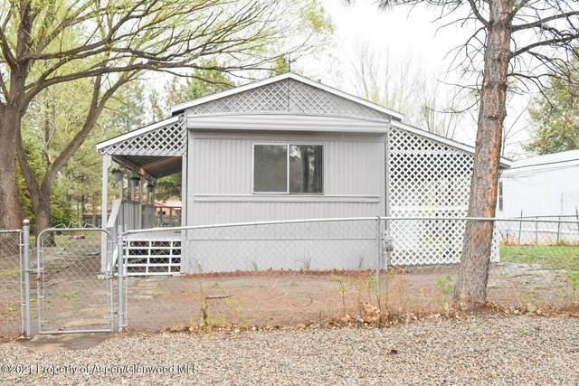 103 Cardinal Way Way, Parachute, CO 81635 (MLS #169561) :: Roaring Fork Valley Homes