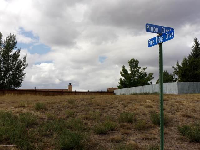 TBD Pinon Circle, Craig, CO 81625 (MLS #169575) :: Roaring Fork Valley Homes