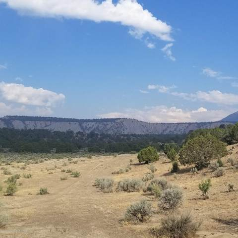 Tract 1 Scutter Lane, Rifle, CO 81650 (MLS #169690) :: Western Slope Real Estate