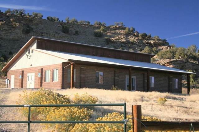 2005 319 County Road, Rifle, CO 81650 (MLS #169719) :: Western Slope Real Estate