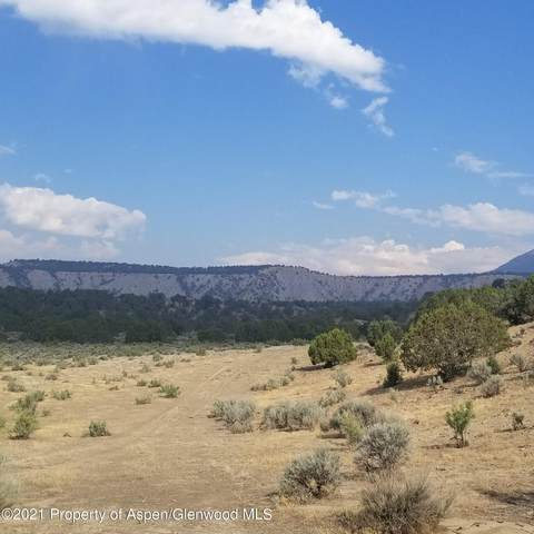 Tract 8 Scutter Lane, Rifle, CO 81650 (MLS #169730) :: Western Slope Real Estate