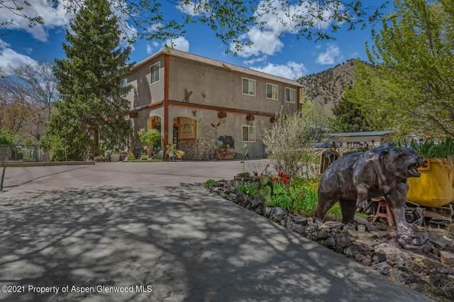 173 Mel Ray Road, Glenwood Springs, CO 81601 (MLS #169879) :: Roaring Fork Valley Homes