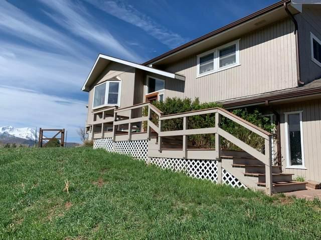 124 Deer Trail Avenue, Carbondale, CO 81623 (MLS #169994) :: Western Slope Real Estate