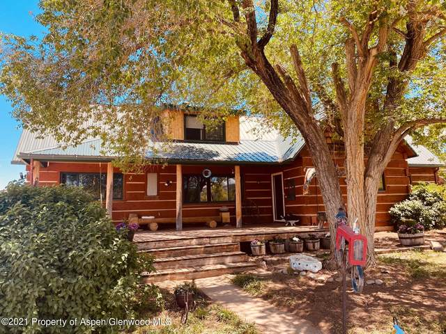 4784 County Rd 312, New Castle, CO 81647 (MLS #170439) :: Roaring Fork Valley Homes