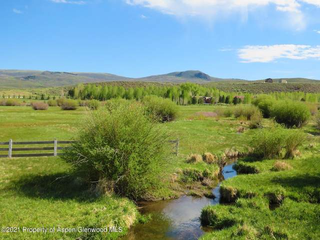 8076 Co Rd 113, Carbondale, CO 81623 (MLS #170471) :: Roaring Fork Valley Homes