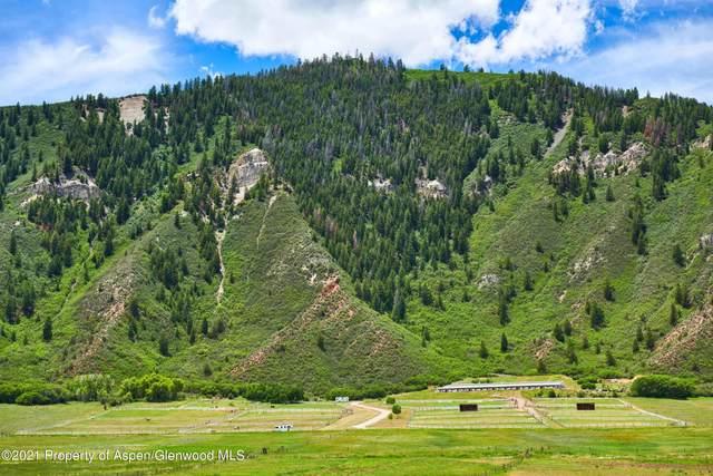 403 E Fork Lane, Basalt, CO 81621 (MLS #170898) :: The Weber Boxer Group | Douglas Elliman