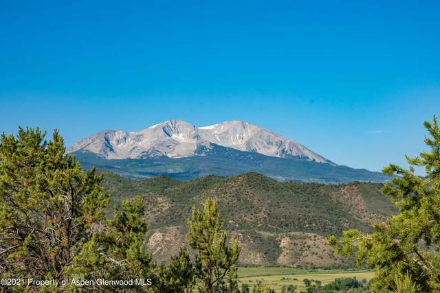 204 Ridge Road, Basalt, CO 81621 (MLS #171017) :: Roaring Fork Valley Homes