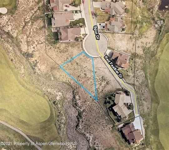 117 Spur Drive, New Castle, CO 81647 (MLS #171334) :: Aspen Snowmass | Sotheby's International Realty