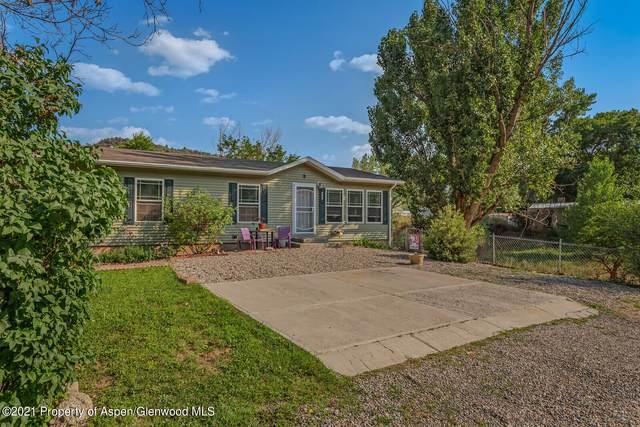 443 Apple Drive, New Castle, CO 81647 (MLS #171456) :: Western Slope Real Estate
