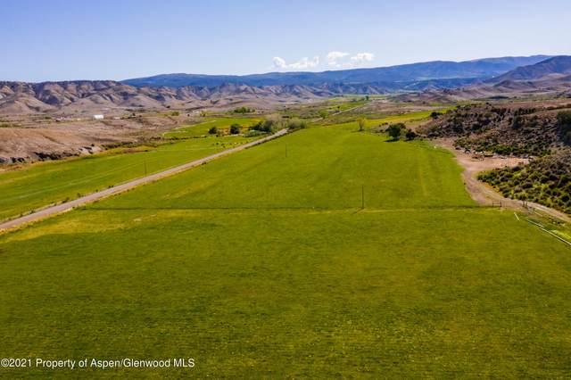 70456 Miguel Road, Montrose, CO 81401 (MLS #171818) :: Roaring Fork Valley Homes