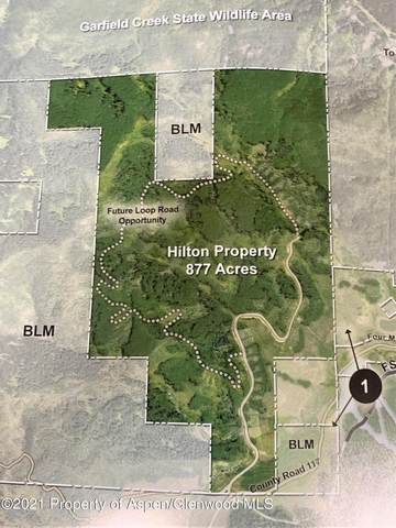 TBD Sunlight Mountain Ranch, New Castle, CO 81647 (MLS #171964) :: Roaring Fork Valley Homes