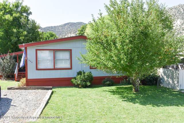5033 County Road 335, New Castle, CO 81647 (MLS #172020) :: Roaring Fork Valley Homes