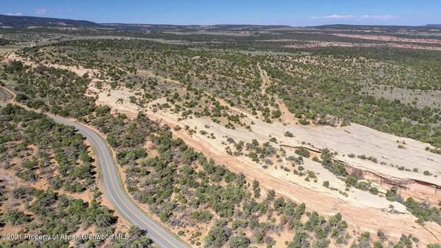21721 Little Park Parcel A Road, Grand Junction, CO 81507 (MLS #172063) :: Roaring Fork Valley Homes