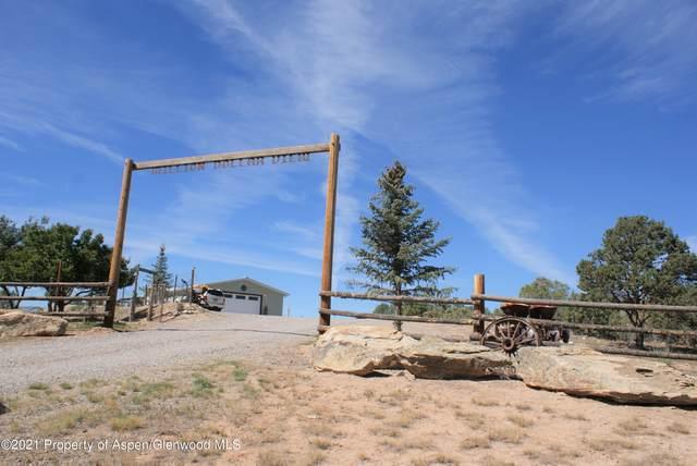 1740 County Road 214, Silt, CO 81652 (MLS #172127) :: The Weber Boxer Group   Douglas Elliman