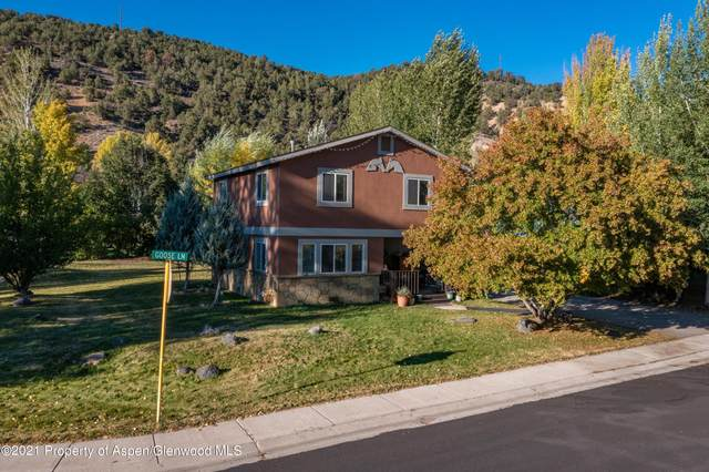 196 Goose Lane, Carbondale, CO 81623 (MLS #172142) :: Aspen Snowmass   Sotheby's International Realty