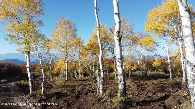 TBD Elk Ridge Road, New Castle, CO 81647 (MLS #172419) :: Aspen Snowmass | Sotheby's International Realty