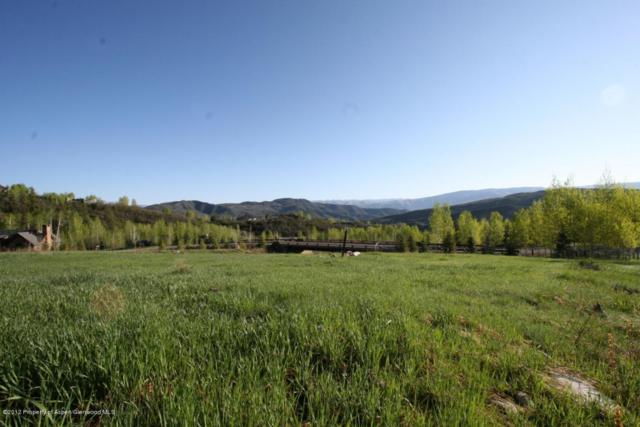 841 Serviceberry, Snowmass Village, CO 81615 (MLS #125004) :: Roaring Fork Valley Homes