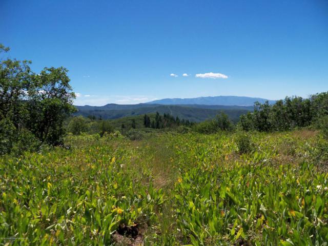 Tbd Mountain Springs Road, Glenwood Springs, CO 81601 (MLS #136131) :: McKinley Sales Real Estate