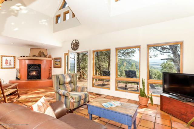 0155 Maroon Mesa Road, Carbondale, CO 81623 (MLS #145444) :: McKinley Sales Real Estate