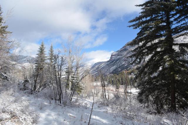 TBD Elk Mountain Drive, Redstone, CO 81623 (MLS #152304) :: McKinley Sales Real Estate
