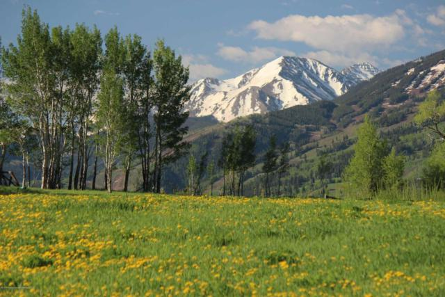 TBD Woody Creek Rd Road, Aspen, CO 81611 (MLS #153749) :: McKinley Sales Real Estate