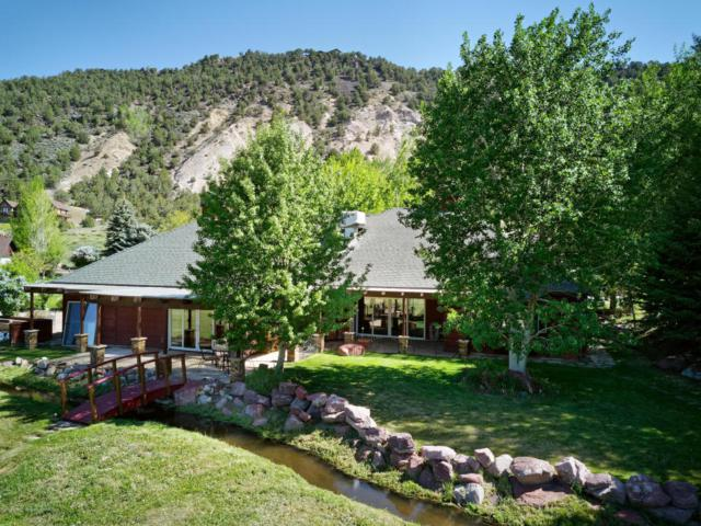 24 Dakota Court, Carbondale, CO 81623 (MLS #154135) :: McKinley Sales Real Estate