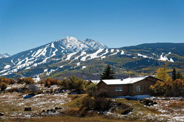 1765 Mclain Flats Road, Aspen, CO 81611 (MLS #155335) :: McKinley Sales Real Estate