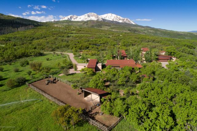 1601 Sopris Mountain Ranch Road, Basalt, CO 81621 (MLS #155621) :: McKinley Real Estate Sales, Inc.