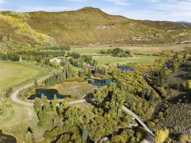 7846/7850 Snowmass Creek Road, Snowmass, CO 81654 (MLS #155947) :: McKinley Sales Real Estate