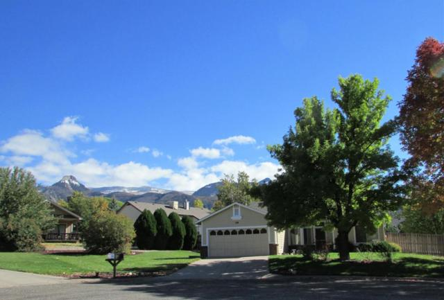 68 Holly Way, Parachute, CO 81635 (MLS #156452) :: McKinley Real Estate Sales, Inc.