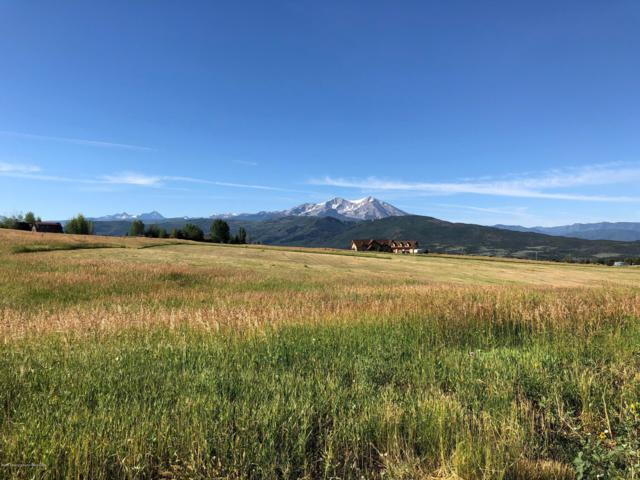 000260 Harmony Road, Carbondale, CO 81623 (MLS #159662) :: McKinley Real Estate Sales, Inc.